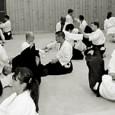 Göteborgs Aikidoklubb startade sin verksamhet 1969 och är därmed en av Skandinaviens äldsta, största och mest väletablerade klubbar, vilket borgar för kontinuitet och kvalitet. Vår aikido – traditionell aikido På...
