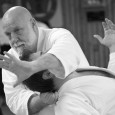 During two weeks in June and July 53 aikidoka from nine countries and three continents came as Sotodeshi 2013 to practice in Gothenburg under the guidance of Ulf Evenås, 7 dan. […]