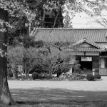 Osenseis dojo, Iwama