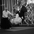 Göteborgs Aikidoklubb höll två uppvisningar under premiärkvällen på Göteborgs Filmfestival. Först på sponsorfesten på Auktionsverket på Tredje Långgatan, sedan på Draken inför visningen av filmen Tokyo Tribes.