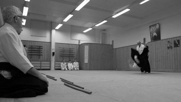 aikido-öppet-hus-2015_3